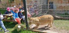 Zoo ve Všetatech